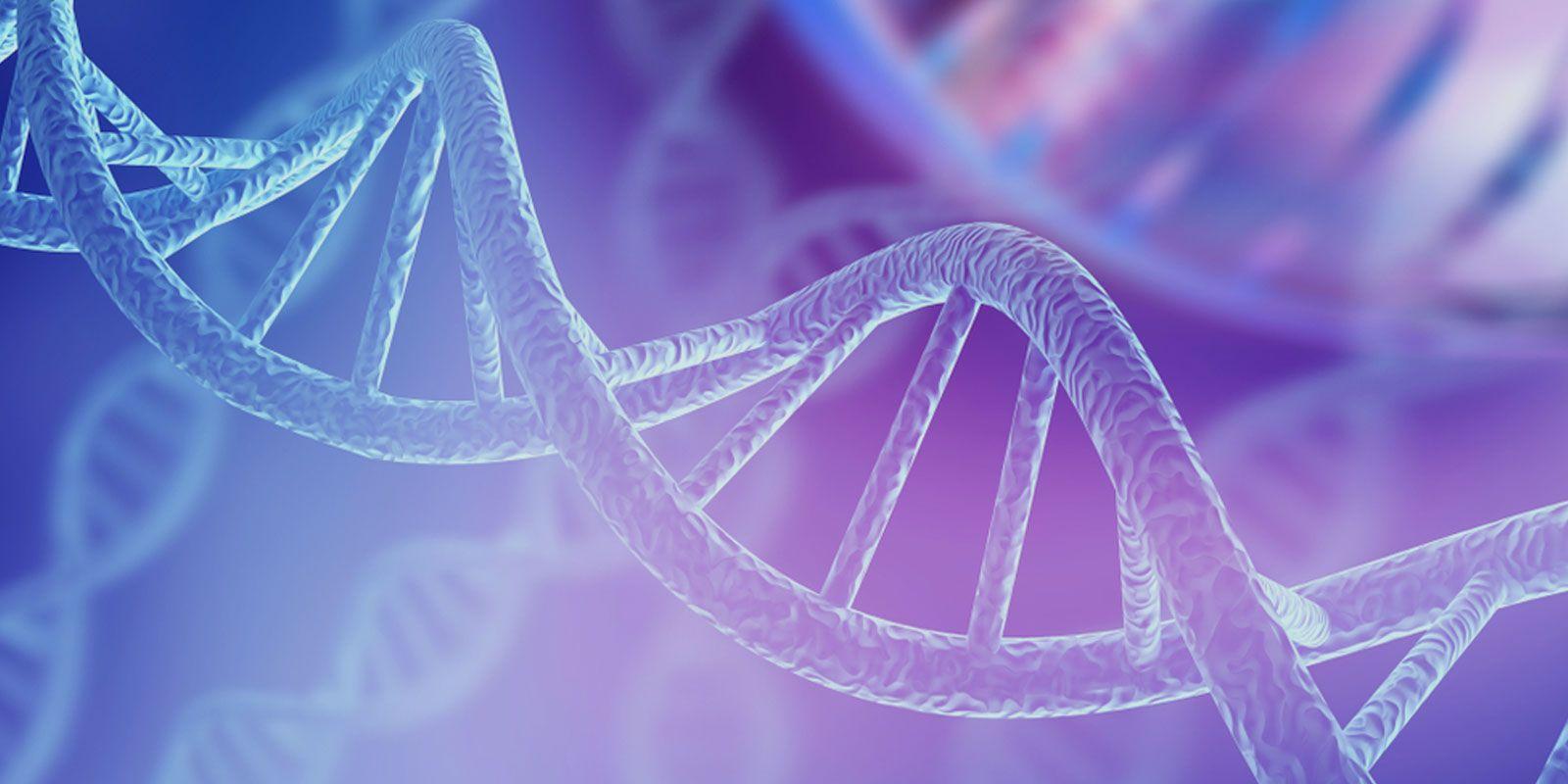 Grado en Bioquímica